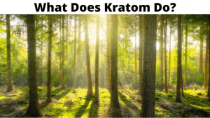what does kratom do to me