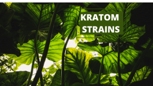 high kratom best strain