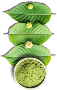 bali maeng da kratom for sale
