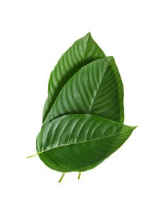 what is safe kratom dosage