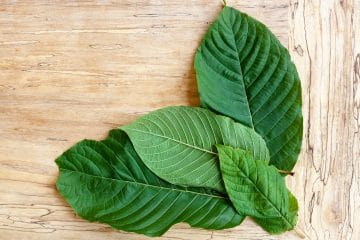 what is the best type of kratom